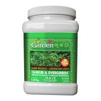 Garden Pro Shrub Evergreen