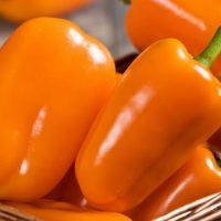 Orange Blaze Pepper